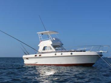 Have fun in the sun on this Zanzibar motor boat charter