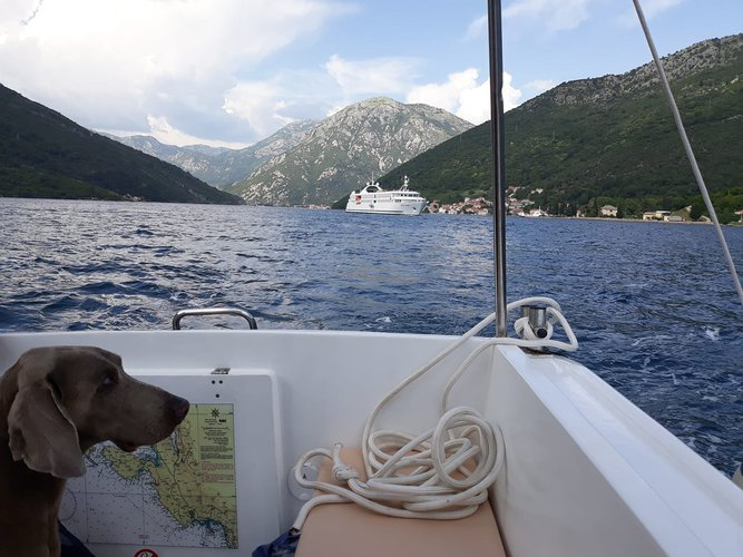 Boating is fun with a Motor boat in Herceg Novi
