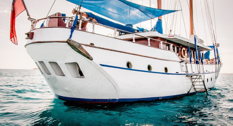 Up to 50 persons can enjoy a ride on this Schooner boat