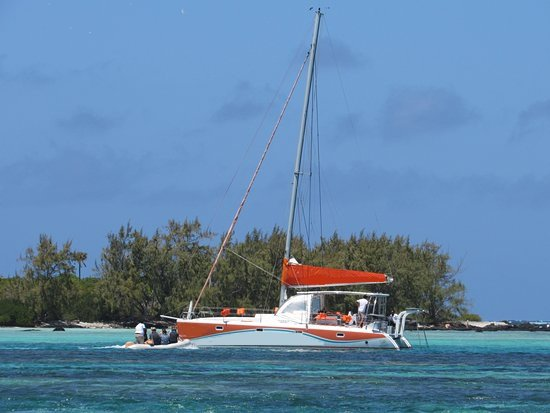 Take this awesome sail catamaran for a spin!