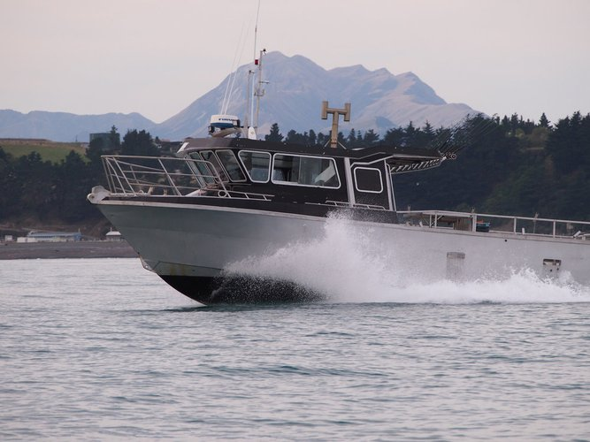 Enjoy fishing in Kaikoura, New Zealand on this motor boat