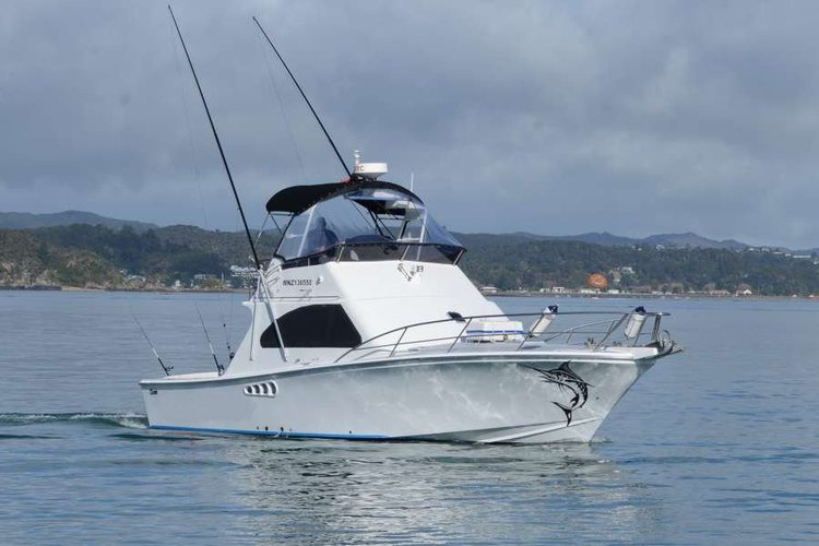 Hop aboard this amazing motor boat rental in New Zealand!