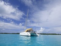 A beautiful companion on your memorable vacation in Tahiti.