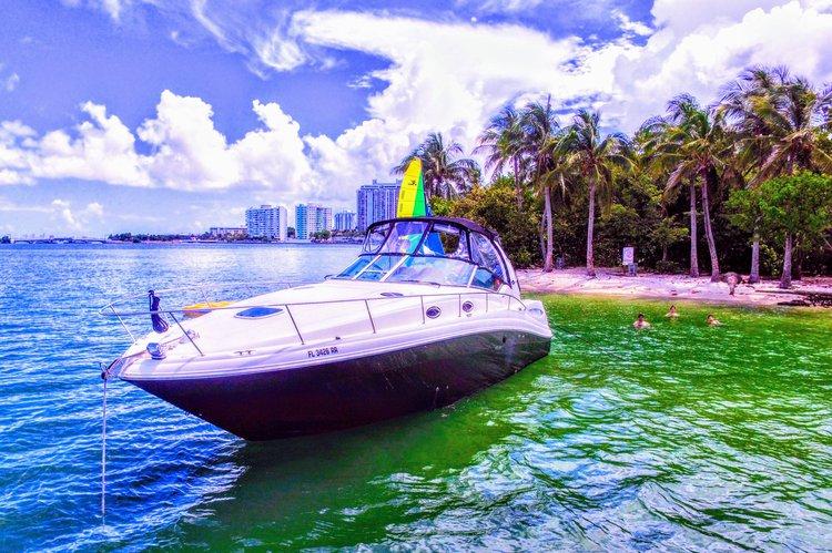 Cruiser boat rental in Rickenbacker Marina, FL