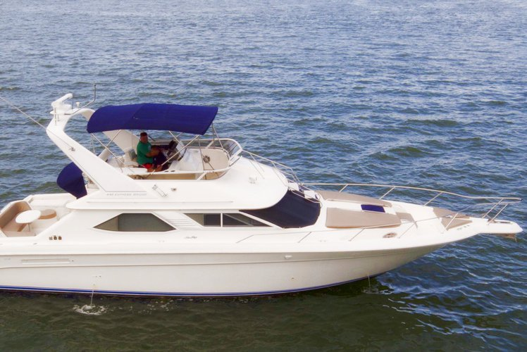 Discover Miami surroundings on this 44'Sea Ray Flybridge 44'Sea Ray Flybridge boat