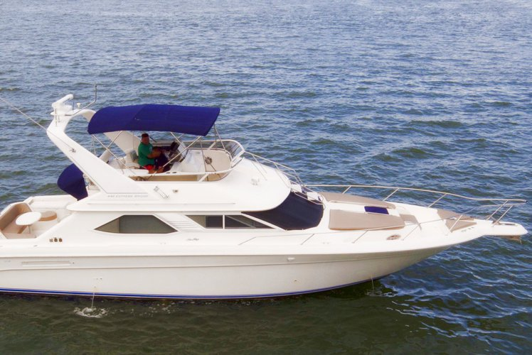 Boat for rent 44'Sea Ray Flybridge 44.0 feet in Sea Isles Marina Downtown Miami, FL