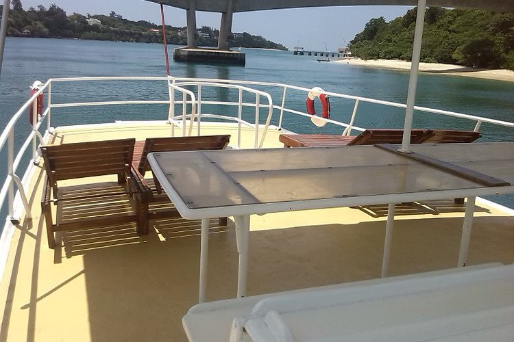 Up to 35 persons can enjoy a ride on this Cruiser boat