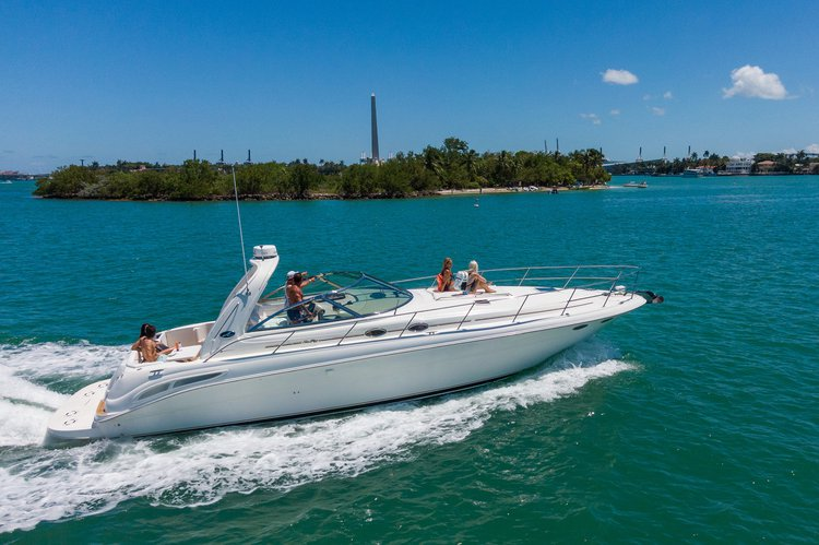 Boat for rent Searay 45.0 feet in MBM - Miami Beach Marina, FL
