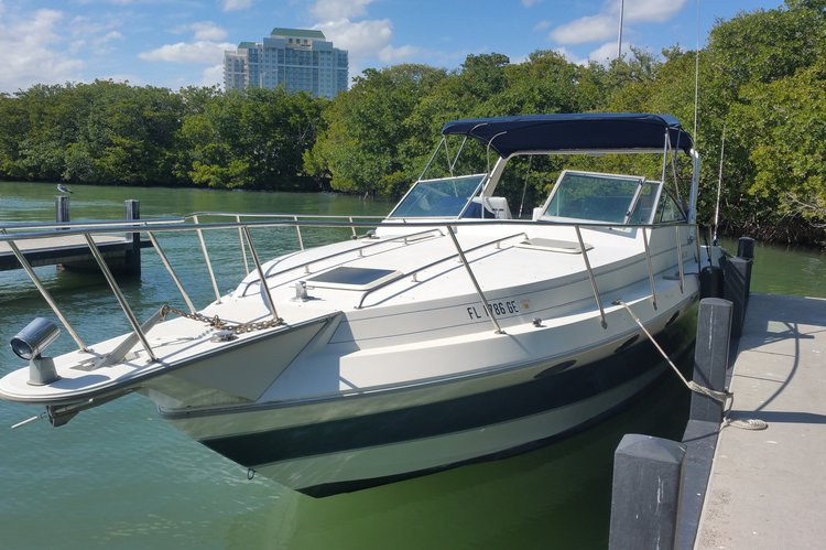 Discover Miami surroundings on this Sport 318 Sun runner boat