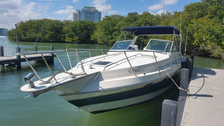 Boat for rent Sun runner 35.0 feet in River Point Marina, FL