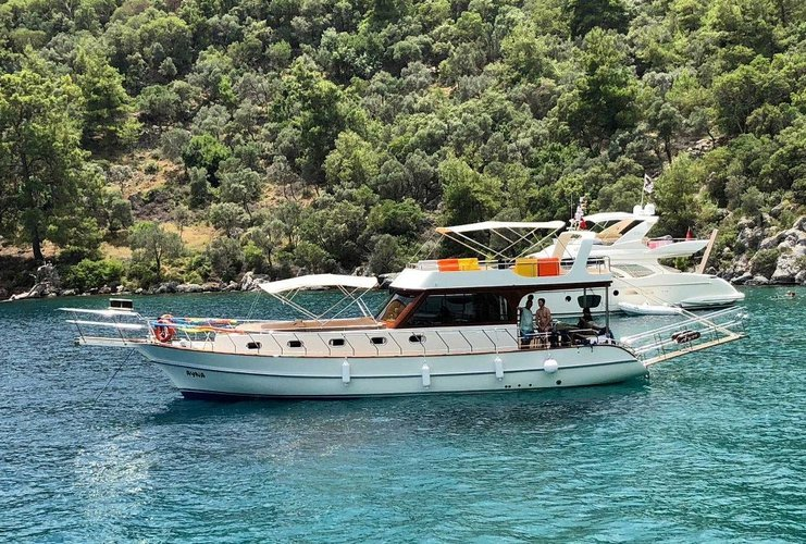 Cruise in style on this wonderful gulet for rent