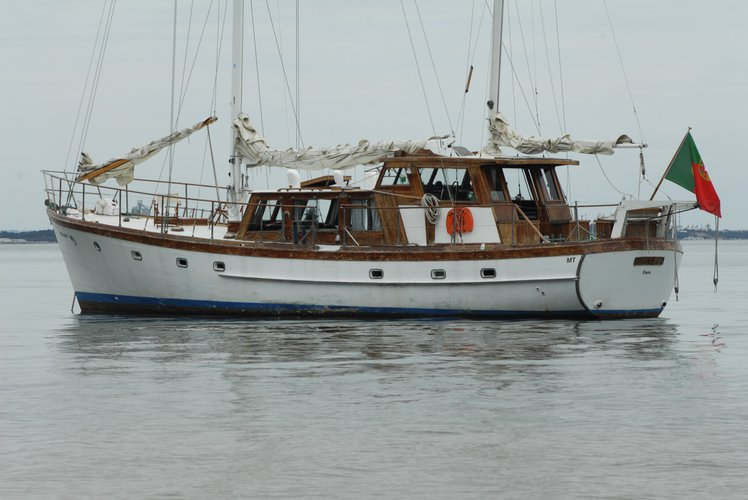 Discover Lisboa surroundings on this Tamora type Brites boat