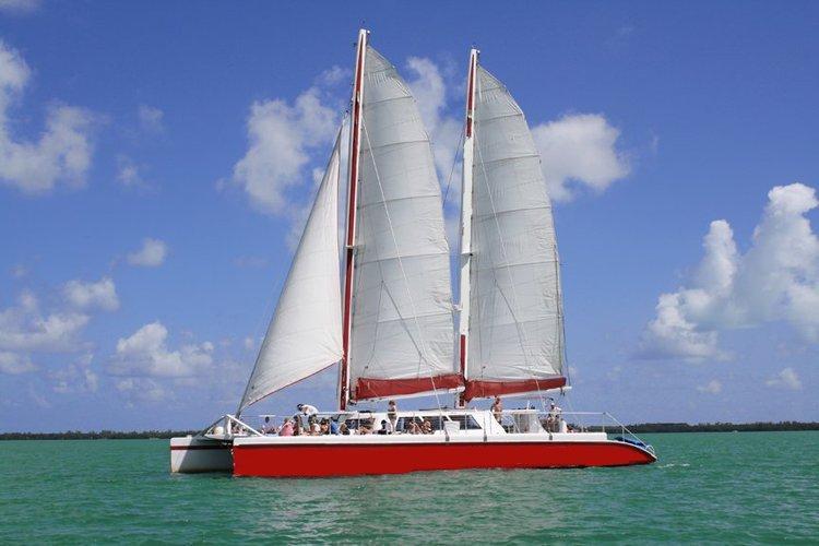 Boat for rent Custom 78.0 feet in MBM - Miami Beach Marina, FL