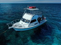 Get the perfect boat to enjoy Bermuda in style