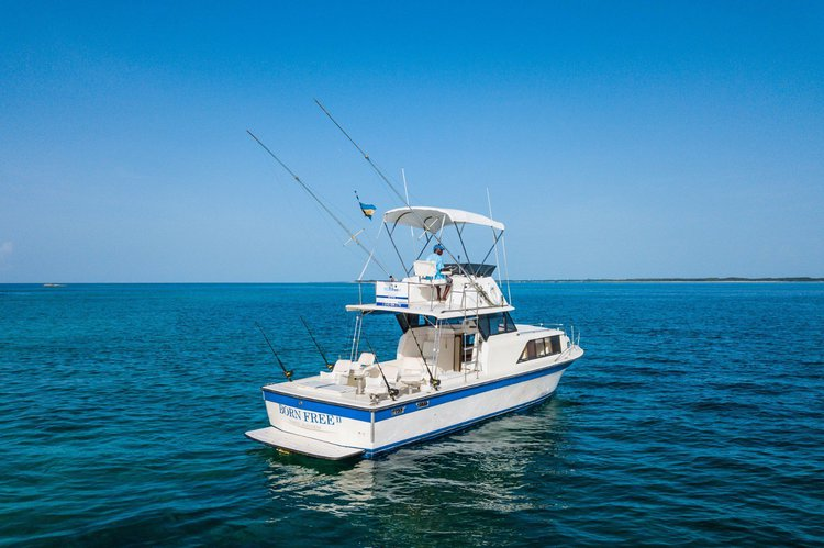 Fishing in Nassau is one click away!