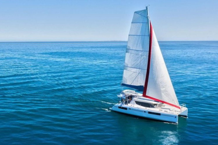 Explore Stunning scenery and amazing wildlife of Canada aboard this catamaran!
