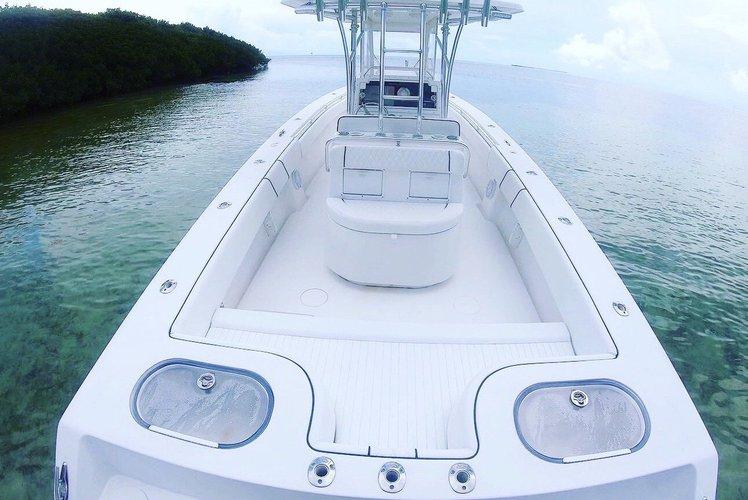 35.0 feet Sea Hunter in great shape