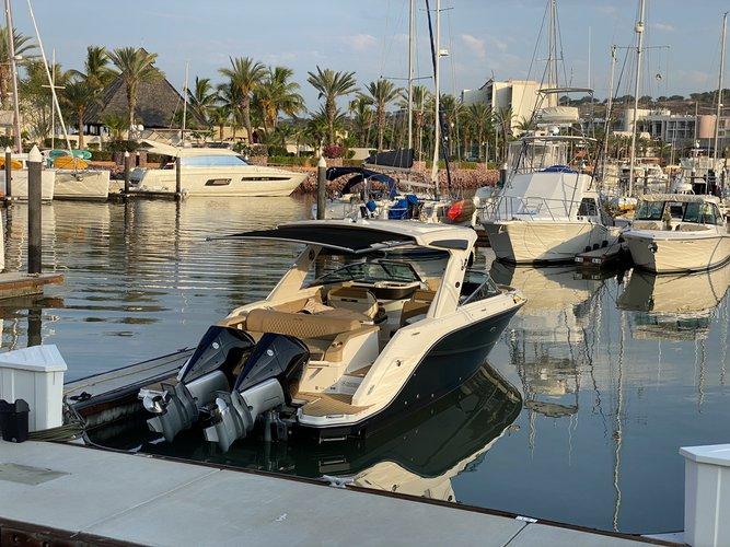 New Sea Ray 31 SLX