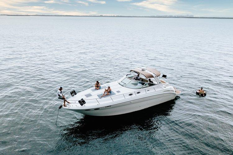 Boat for rent Sea Ray 42.0 feet in MBM - Miami Beach Marina, FL