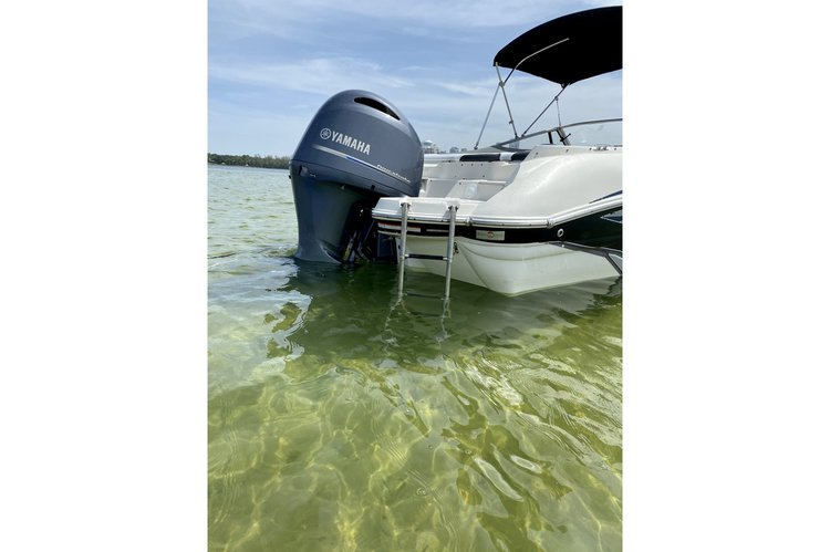Discover Key Biscayne surroundings on this 234LR Stingray boat