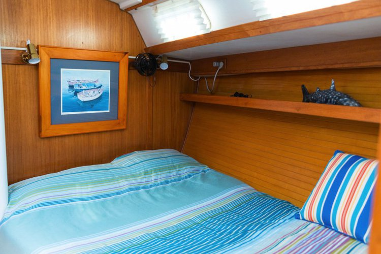 Discover San Diego surroundings on this Custom Catalina boat