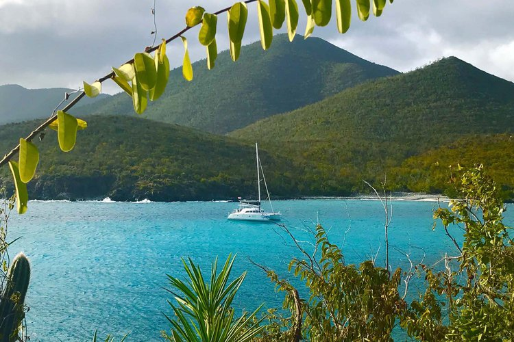 Janise Sailing Day Charter
