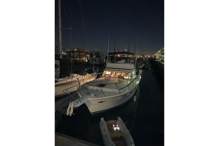 Viking's 43.0 feet in Marina del Rey