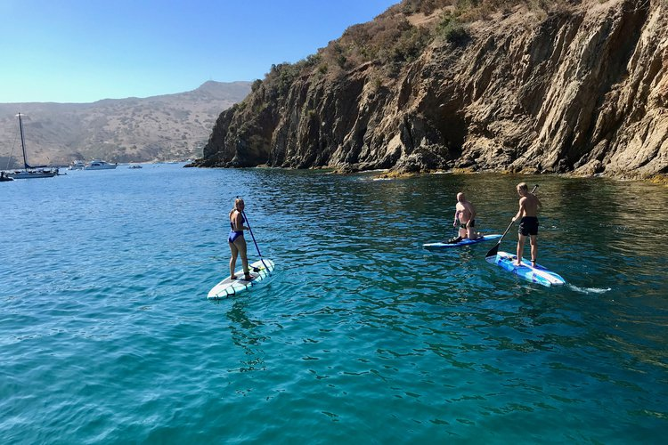 Discover Long Beach surroundings on this Custom Californian boat
