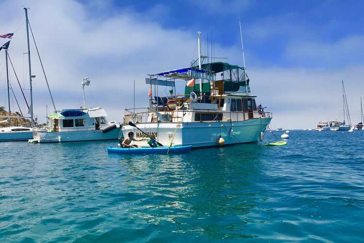 Discover Long Beach surroundings on this Custom Californian boat