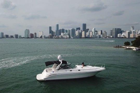 Boat for rent Sea Ray 45.0 feet in Vice Marina,