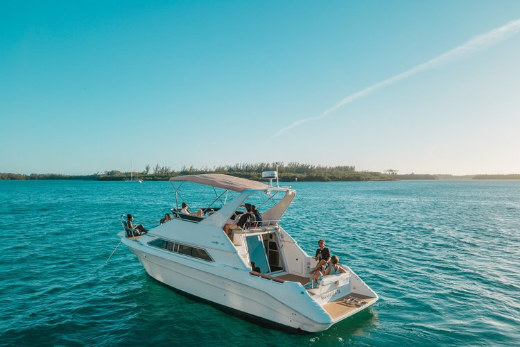 Discover Miami surroundings on this Flybridge Express Searay boat