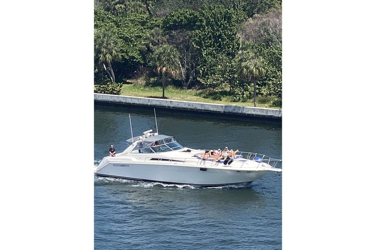 Discover Fort Lauderdale surroundings on this Sedan-Bridge 50 Sea Ray boat