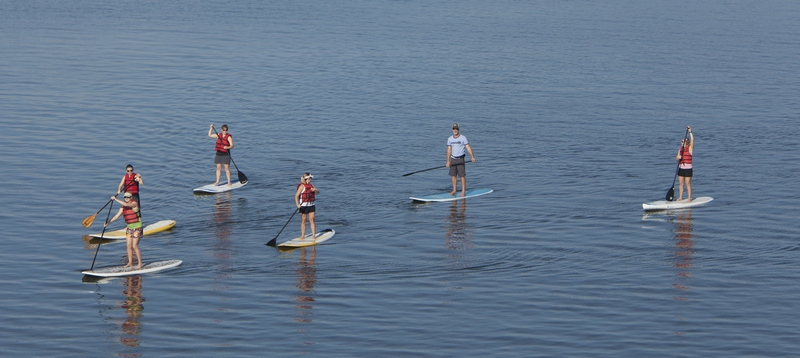paddle-boarding-coconut-grove