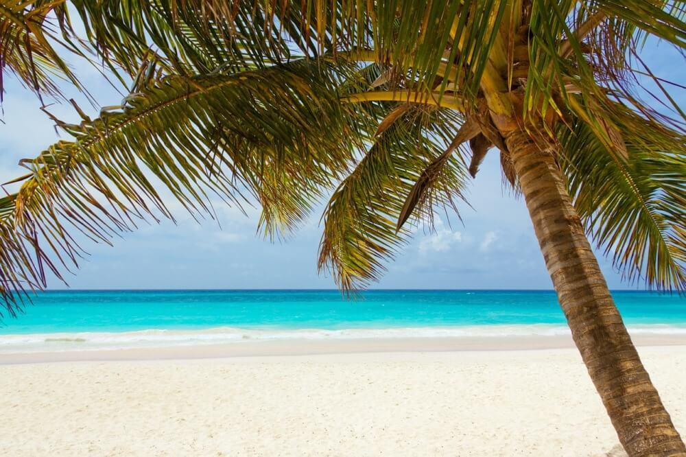 Caribbean-Sailing-Charters-Sandy-Spit-Island
